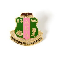 AKA- 3D Shield Lapel Pin